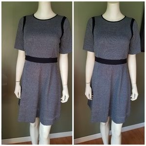 Ann Taylor Dress Size 6 Petite New with tags